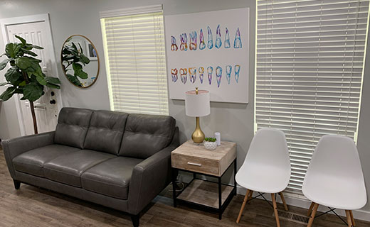 Dr Matthew Bender and Dr Scott Lewis at Meadowbrook Dental in Salt Lake City, Utah have a waiting room that has various seating options and dental art